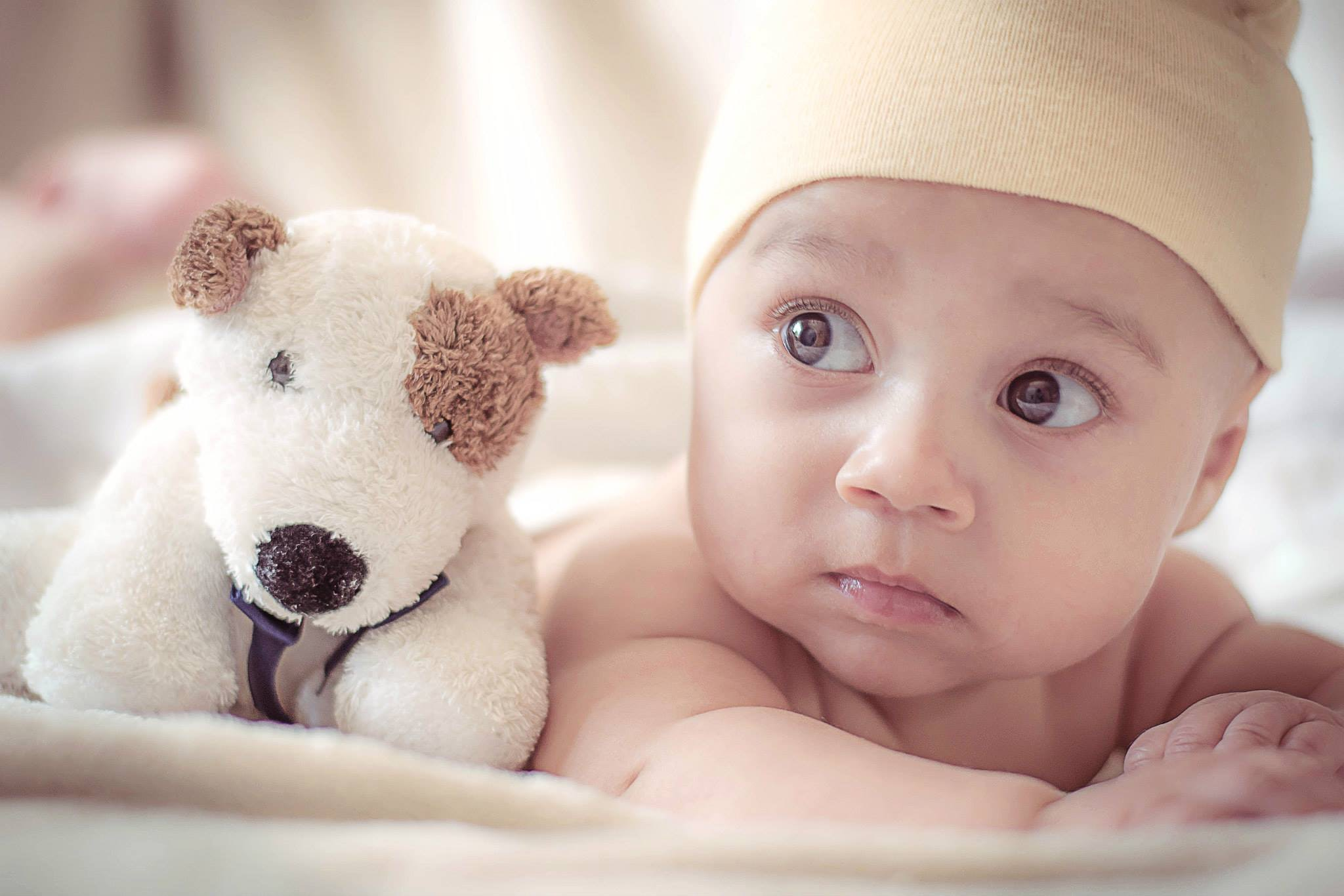 Take Home a Baby or Your Money Back   Overlake Reproductive Health